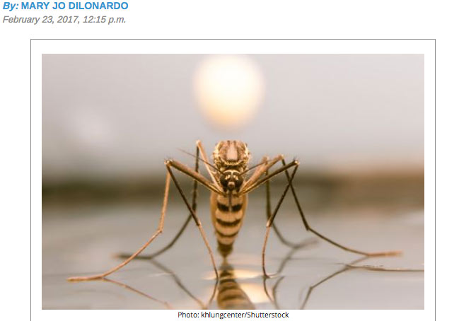 Take this mosquito quiz to prepare for the inevitable onslaught By: Mary Jo DiLonardo